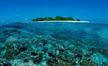 Le migliori isole per fare Snorkeling alle Maldive