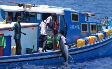 pesca alle maldive